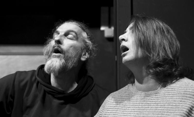 Stage Voix_Laurent Chouteau_ La Marmite_Doussard